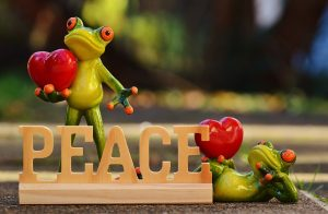 frogs around the word peace